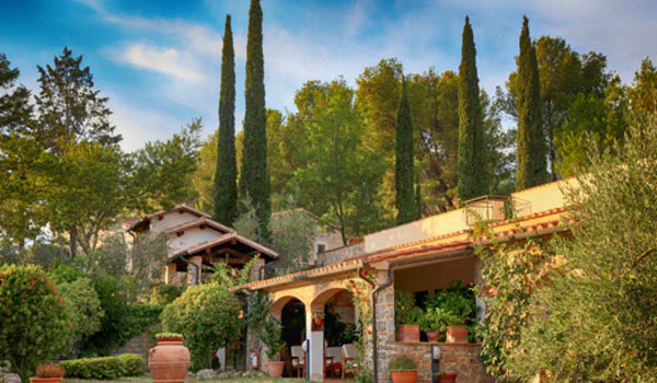 Jardin méditerranéen : que planter ? | Villas Trident